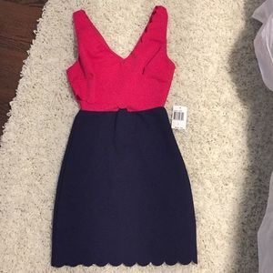 Navy and Pink Scalloped Dress